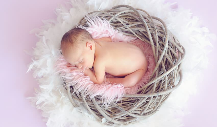 Newborn Photo Shoot Trends and Tips